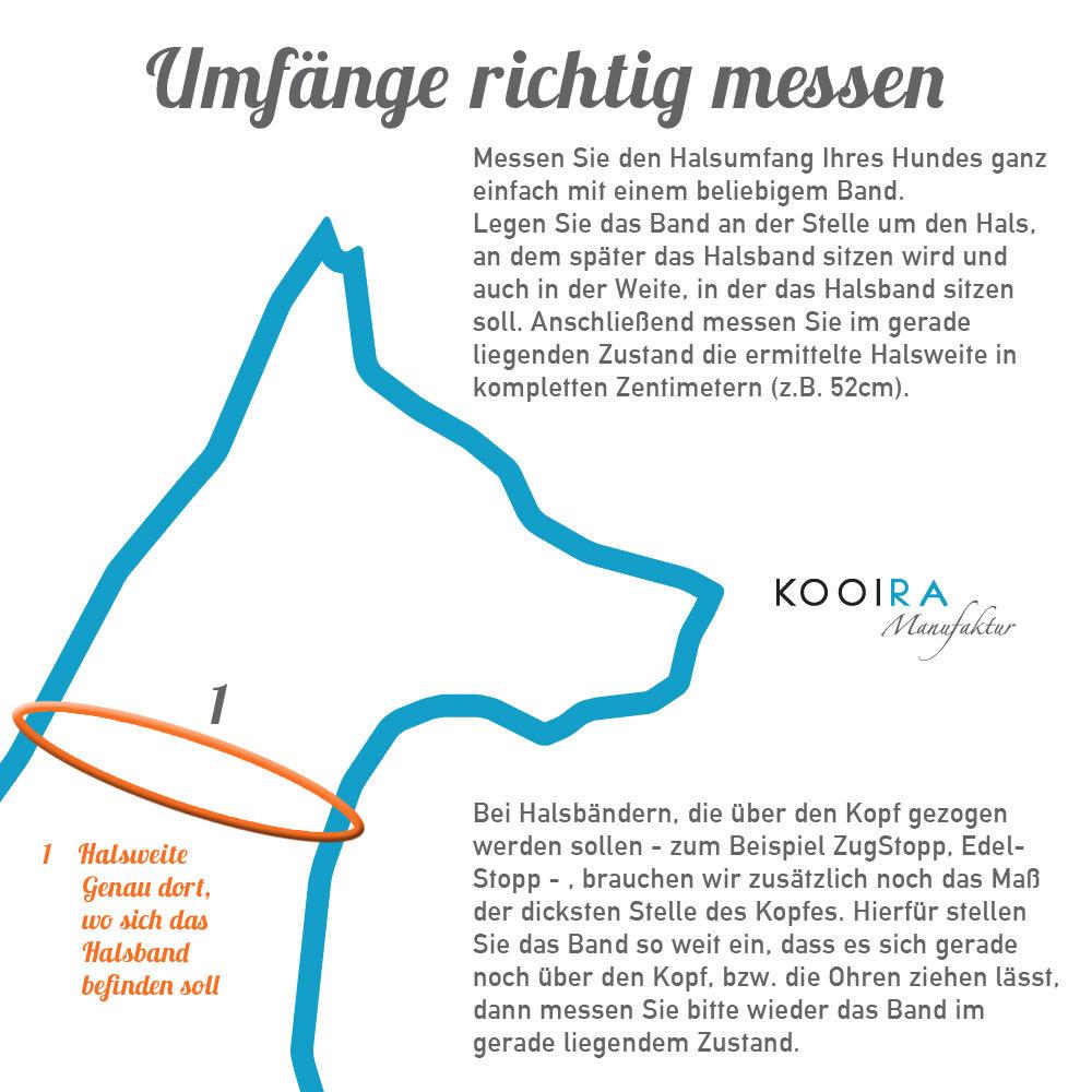 KOOIRA-Hundehals-und-Hundekopfweite-messen