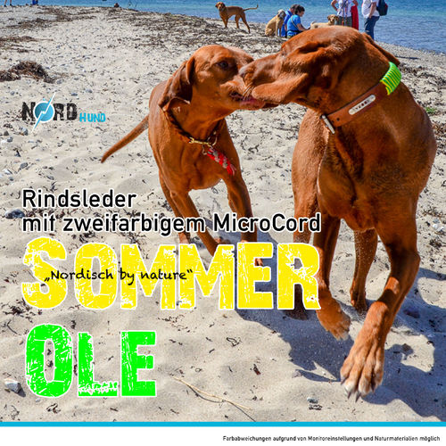 Sommer OLE NordBand pflanzlich gegerbtes Leder MicroCord